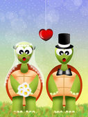 Turtles in love — Foto Stock