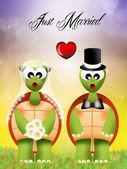свадьба черепах — Стоковое фото