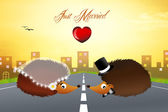 Hedgehogs in love — 图库照片