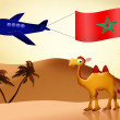 Camel with flag Morocco — Stock Photo