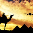 Trip to Egypt — Stock Photo #34726725