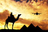 Trip to Egypt — Stock Photo