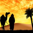 Bedouin with camel in the desert — Stockfoto