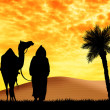 Stock Photo: Bedouin with camel in the desert