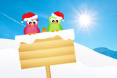 Birds on snow sign — 图库照片
