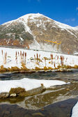 Frozen lake, in Livigno — Foto Stock