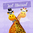 Wedding of giraffe — Stock Photo