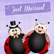 Wedding of ladybugs — Stock Photo #39681665