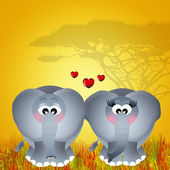 愛の象 — ストック写真