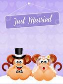 Wedding of monkeys — ストック写真