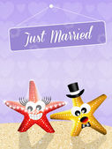 Wedding of starfishes — Stockfoto