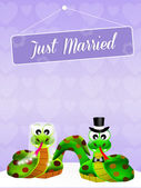 Wedding of snakes — ストック写真