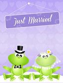 青蛙的婚礼 — 图库照片