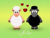 Sheeps in love — Stock Photo