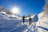 Cross-country skiing — Stok fotoğraf