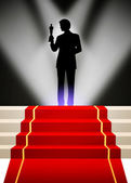 Oscar red carpet — Stock Photo