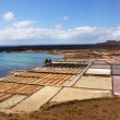 Stock Photo: Salinas, Lanzarote