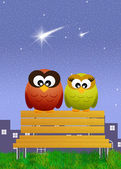 Owls on bench — Stock Photo