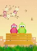 Birds in spring — Stock Photo