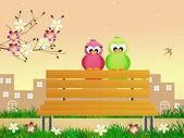 Birds in spring — 图库照片