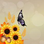 Papillon sur tournesols — Photo