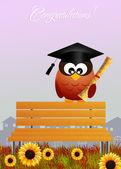 Owl graduate — Stock Photo
