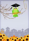 Vogel afgestudeerde — Stockfoto