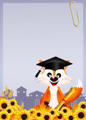Red fox graduate — Stockfoto