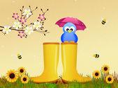 Fågel på regn stövlar — Stockfoto