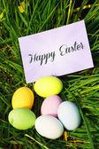 Пасхальные шоколадные яйца — Стоковое фото