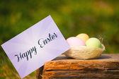 Greeting Easter — 图库照片