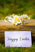 Greeting Easter — Stock Photo