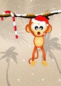 обезьяна с рождества шляпу — Стоковое фото