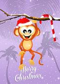 Monkey at Christmas — Stock fotografie