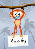 Bebé mono — Foto de Stock