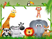 Jungle animals — Stock Photo