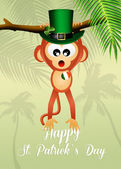 Monkey for St.Patrick's day — Stock fotografie