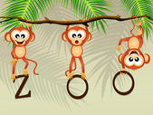 Apen in de dierentuin — Stockfoto