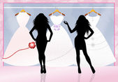 Wedding clothes — Stock Photo