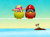 Owls go on vacation — Photo
