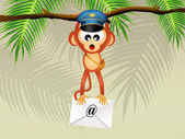 Monkey postman — Stock Photo