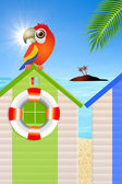 Parrot on cabins sea — Stock Photo