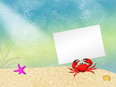 Crab with card — Stockfoto