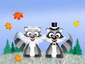 Wedding of raccoons — Stock Photo