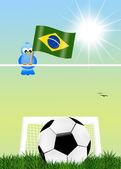 Brazilian football championship — Stock Photo