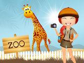 Garota faz safari — Foto Stock