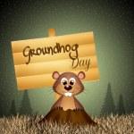 Groundhog Day — Stock Photo #48721961