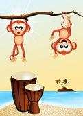 Monkeys and drums — Foto de Stock