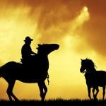 rodeocowboy — Stockfoto