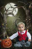 Pumpkin Boy — Stock Photo